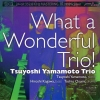 Tsuyoshi Yamamoto Trio - What a Wonderful Trio! [DXD 24K Gold CD] (Ultimate Version)
